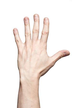 Main entièrement ouverte isolée sur fond blanc