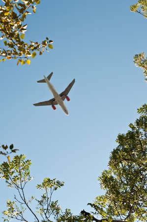 Plane about to land taken through trees Stock Photo
