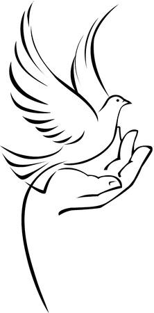 duif tekening: Duif op de hand