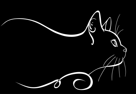 고양이 짤막한 일러스트