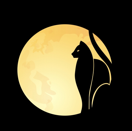 Black cat   full moon