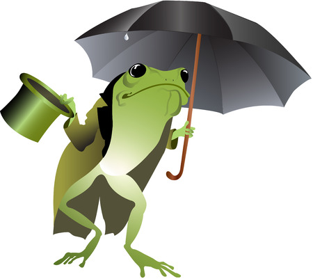 Umbrella Top hat Frog Vector
