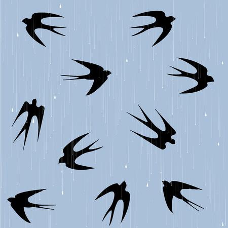 Swallows under rain