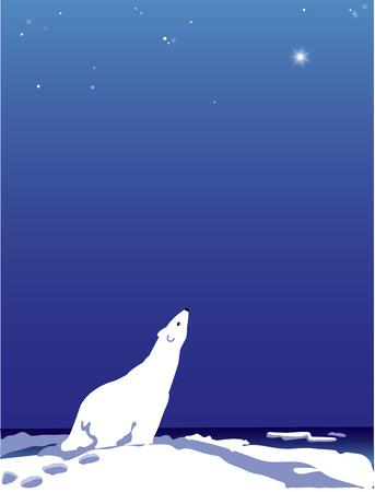 Polar Bear  イラスト・ベクター素材