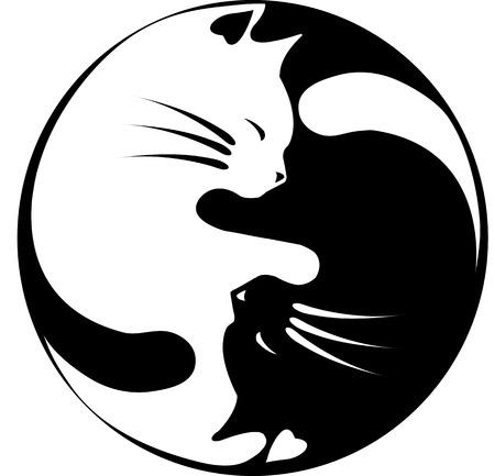 kotów: Koty Yin-Yang Ilustracja