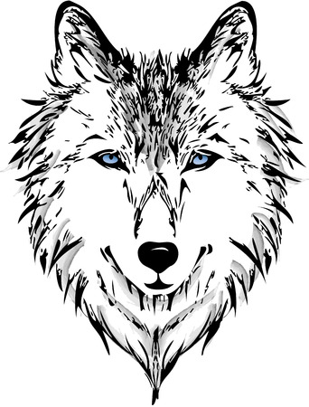 wolf head: Wolf head Illustration