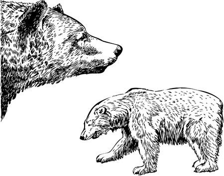 Dragen grafische tekening Stock Illustratie