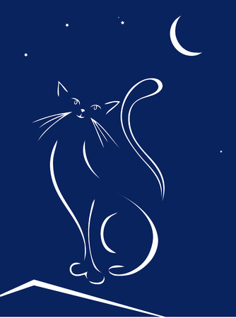 Cat on a roof at night