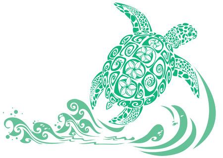 arrecife: Tortuga verde con el patrón de flores plumeria Vectores