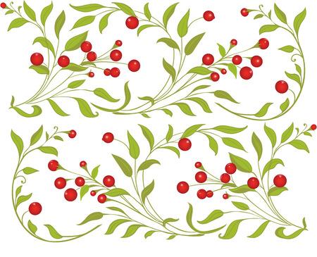 frutos rojos: Bayas deja ornamentbackground Vectores