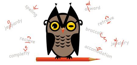 schoolwork: Owl proofreading