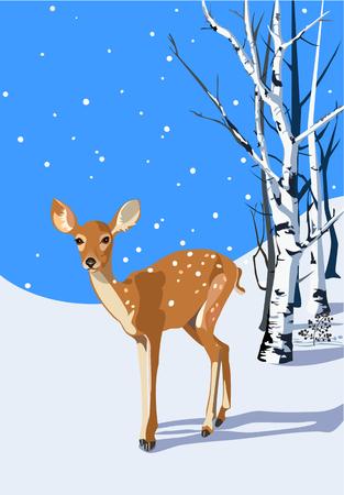 Fawn in winter scene Ilustração