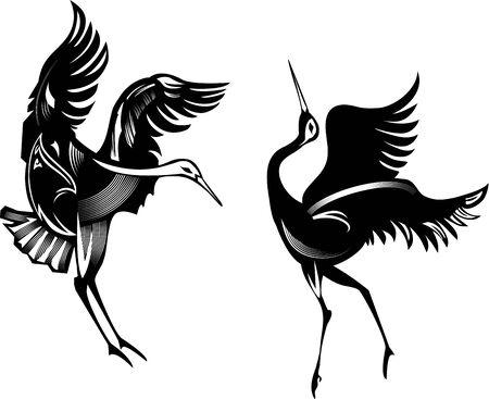 Two cranes dancing