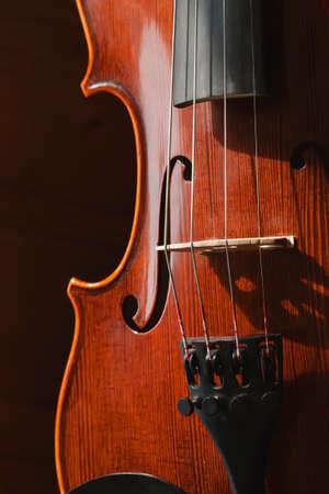 Classic violin photo