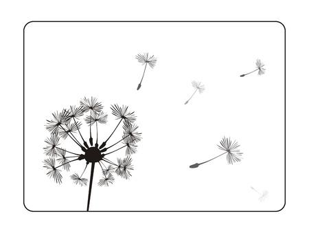 암술: 흰색 배경에 민들레 실루엣. 블랙 프레임 레트로 그림. 따뜻한 날씨 일러스트
