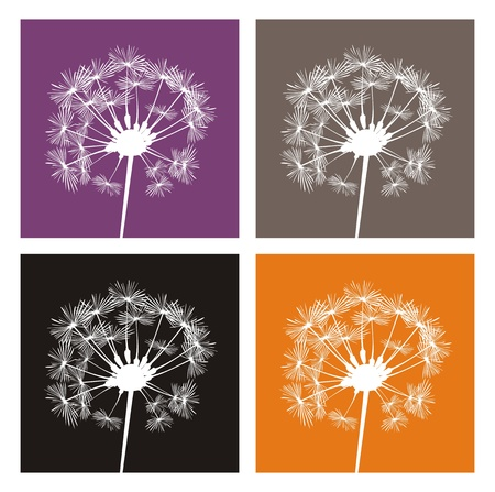 4 white dandelion silhouette on different, colorful backgrounds  Indian summer icons  Vector