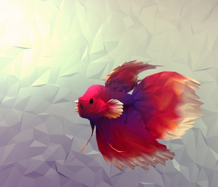 betta: Fight fish in water 3d render computer graphic illustration in mosaic flat surface style  Wallpaper with betta siamese red, white and violet exotic fish in aquarium