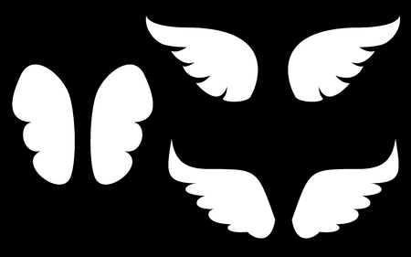 wings bird: Wings collection. Illustration set with white angel or bird wing icon isolated on black background