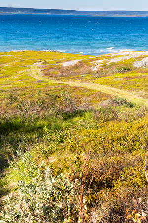 Norway seaside landscape in summer