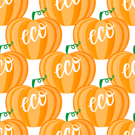 Cartoon orange pumpkin seamless pattern. Lettering Eco. Vector ilustration isolated on white background. Autumn seasonal eco vegetable design.