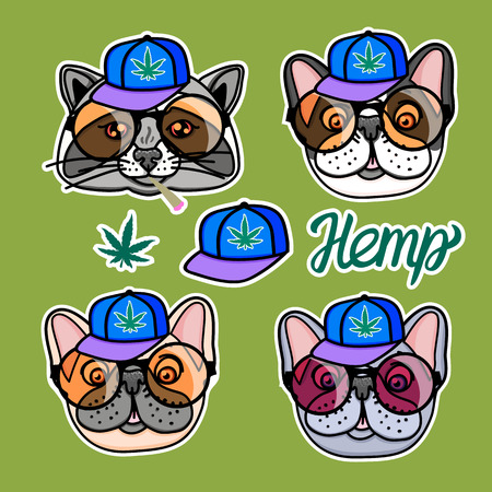 Set Raccoon and dog boy in cool hip hop style. Vector for print on T-shirts and other souvenir products. Hemp lettering isolated on green background