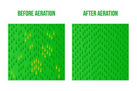Top view Lawn Aeration. Before and After stage. Vector stock sign surface illustration. Bad and good lawn isolated on white background