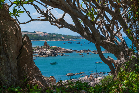 Trees and the blue sea in Vietnam
