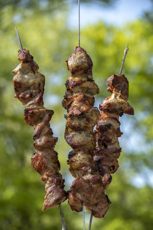 Grilled skewers meat on coals and grass Фото со стока - 77901304