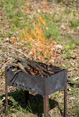 Burning BBQ for a picnic in the forest Фото со стока