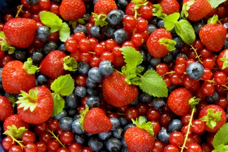 wildberry: Berries background