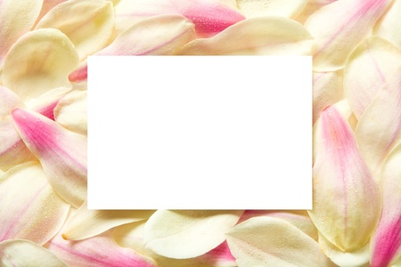 blank center: Blossom leaves frame