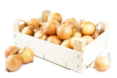 onions: Las cebollas frescas en una caja de madera sobre fondo blanco