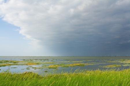 Salzwiesen an der Küste von Nordfriesland, Deutschland Lizenzfreie Bilder