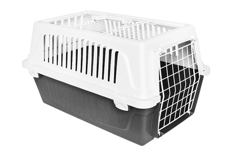 cat carrier: Pet carrier isolated on white Stock Photo