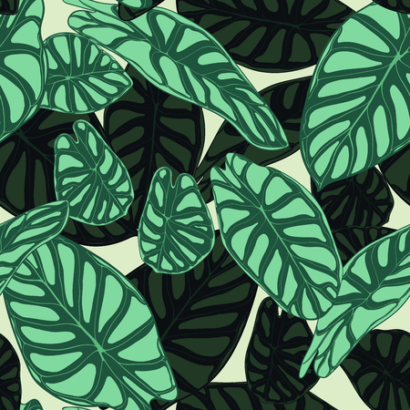 Seamless Tropical Pattern. Trendy Background with Rain Forest Plants. Vector Leaf of Alocasia. Green Araceae. Handwritten Jungle Foliage in Watercolor Style. Seamless Exotic Pattern for Tile, Fabric.  イラスト・ベクター素材