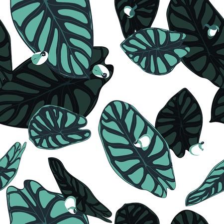 Seamless Tropical Pattern. Trendy Background with Rain Forest Plants. Vector Leaf of Alocasia. Araceae. Handwritten Jungle Foliage in Watercolor Style. Seamless Exotic Pattern for Textile, Fabric.