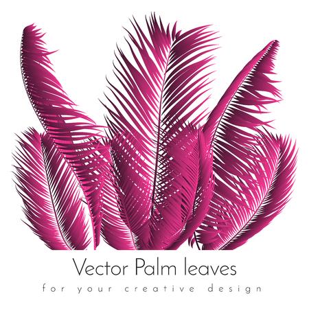 Pink Palm Leaves. Exotic Plants of Coconut. Trendy Branches Set. Vector Tropical Foliage. Botanical Illustration of Jungle Leaf. Pink Palm Leaves for Pattern, Print, Fabric, Textile or Trendy Design Ilustração