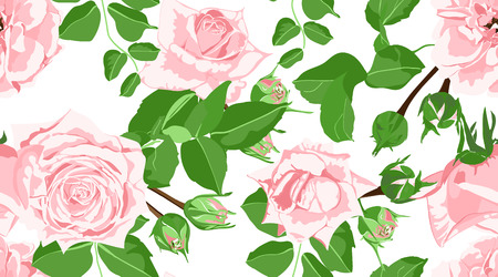Pink Roses Pattern, Watercolor Floral Seamless Illustration. Vintage Flowers, Rustic Wedding, Green Leaves. Roses Drawn in Watercolor Style. Spring Texture for Fashion Print. Wallpaper Watercolor.