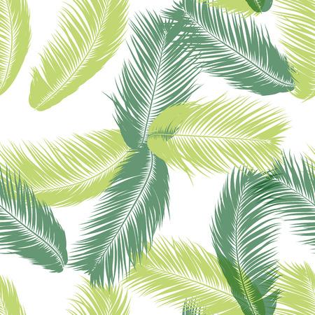 Plumas de vector. Tropical de patrones sin fisuras con plantas exóticas de la selva. Hoja de árbol de coco. Fondo de verano simple. Ilustración EPS 10. Vector plumas siluetas o hojas hawaianas de palmera.