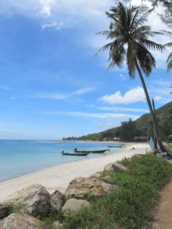 Tropical beach with palm trees in Thailand photo