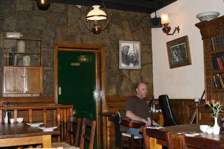 Musician in a restaurant in Dublin (Ireland)