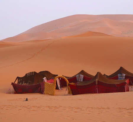 A small village with Bedouin tents in the desert