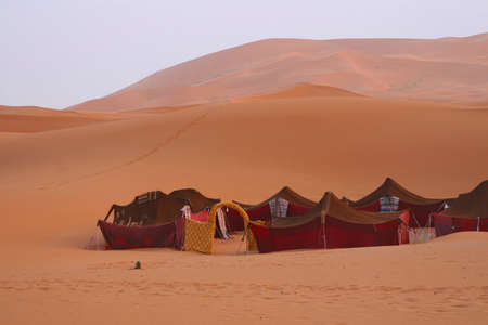 Bedouin tents in the desert photo