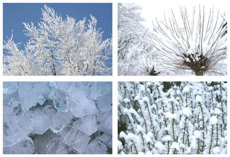 Winter wonderland Stock Photo - 15091373