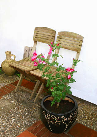 Terrace with two chairs and a blooming Chinese rose Stock Photo - 15091375