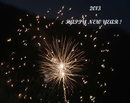 Happy New Year in 2013 when dreams come true photo