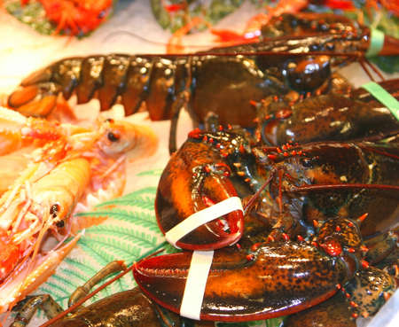 Fresh lobster for sale at the market Stock Photo
