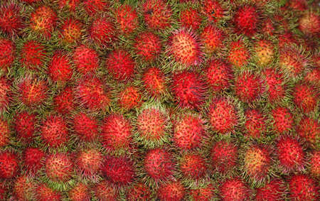 Fresh rambutans for sale at the market Stock Photo - 16080032