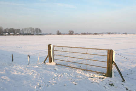 Dutch polder landscape in the winter photo