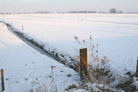 Dutch polder landscape in the snow Stock Photo - 16846930